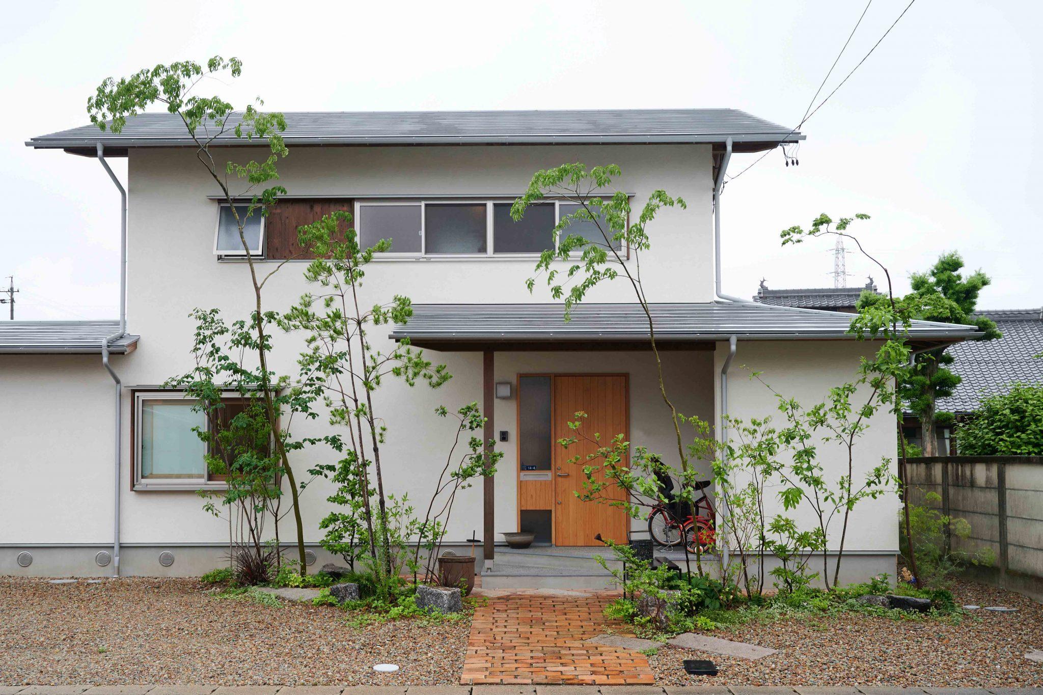 多加木の家